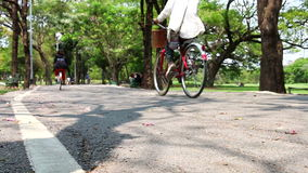 Montar a caballo de la bicicleta en el parque HD almacen de video