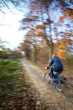 Montar a caballo de la bicicleta en un parque de la ciudad Imagen de archivo