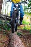 Montar a caballo de la motocicleta en el bosque fotos de archivo