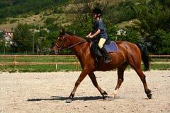 Montar a caballo de la muchacha Fotos de archivo libres de regalías