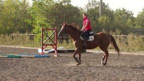 Montar a caballo de la mujer joven en un caballo marrón lujoso almacen de video
