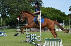 Montar a caballo de la parte posterior del caballo de la muchacha Imagen de archivo