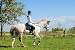 Montar a caballo de lomo de caballo Fotografía de archivo