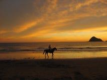 Montar a caballo de lomo de caballo en Mazatlan S Foto de archivo libre de regalías
