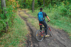 Montar a caballo de Mountainbiker en la bicicleta en parque del verano en el día soleado Imagenes de archivo