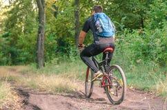 Montar a caballo de Mountainbiker en la bicicleta en parque del verano en el día soleado Fotografía de archivo