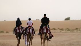 Montar a caballo del camello Imagenes de archivo