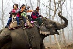 Montar a caballo del elefante Fotografía de archivo