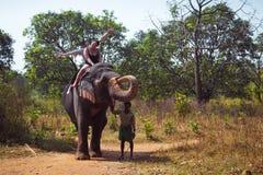 Montar a caballo del elefante Fotos de archivo libres de regalías