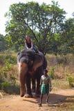 Montar a caballo del elefante Imagenes de archivo