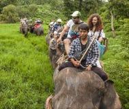 Montar a caballo del elefante de los turistas en Chiang Mai Thailand fotos de archivo