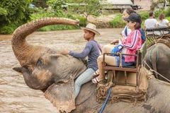 Montar a caballo del elefante de los turistas en Chiang Mai Thailand fotografía de archivo libre de regalías