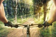 Montar a caballo del hombre en una bicicleta en bosque Fotos de archivo libres de regalías