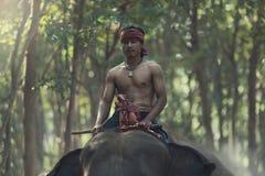 Montar a caballo del Mahout en la parte posterior del elefante Fotos de archivo