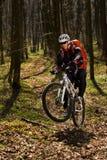 Montar a caballo del motorista de la montaña en la bici en el paisaje más springforest Imagen de archivo