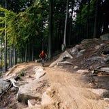 Montar a caballo del motorista de la montaña que completa un ciclo en bosque del otoño Imagen de archivo libre de regalías