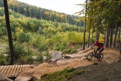 Montar a caballo del motorista de la montaña que completa un ciclo en bosque del otoño Fotos de archivo libres de regalías