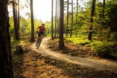 Montar a caballo del motorista de la montaña que completa un ciclo en bosque del verano Fotografía de archivo