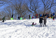 Montar a caballo del trineo de los niños en la nieve Imágenes de archivo libres de regalías