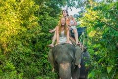 Montar a caballo feliz en un elefante, mujer de la familia que se sienta en el cuello del ` s del elefante Foto de archivo libre de regalías