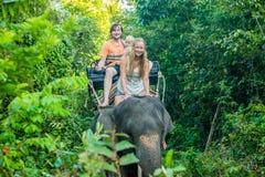 Montar a caballo feliz en un elefante, mujer de la familia que se sienta en el cuello del ` s del elefante Imagen de archivo libre de regalías