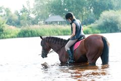 Montar a caballo joven del adolescente a caballo en el río en la madrugada Fotos de archivo