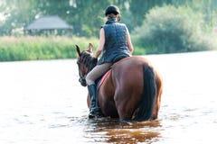 Montar a caballo joven del adolescente a caballo en el río en la madrugada Imagen de archivo libre de regalías