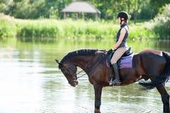 Montar a caballo joven del adolescente a caballo en el río en la madrugada Fotos de archivo libres de regalías