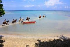 Montar a caballo posterior del caballo en el mar, Jamaica Imagen de archivo