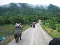 Montar a caballo Tailandia del elefante Imagen de archivo libre de regalías