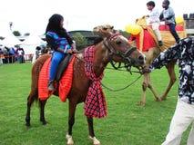 Montar del camello y a caballo en Nairobi Kenia Imagen de archivo