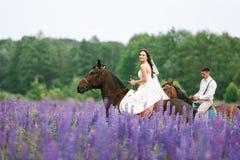 Montar a los recienes casados en el campo Foto de archivo libre de regalías