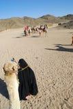 Montar un camello en Egipto imagen de archivo