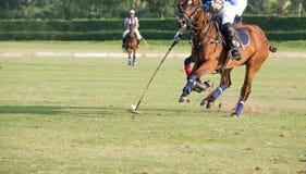 Montare un cavallo per afferrare una palla Immagini Stock Libere da Diritti