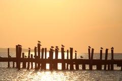 Montauk旅行 免版税图库摄影