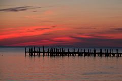 Montauk Travel. Birds are seen at sunset on a dock in Montauk, NY Royalty Free Stock Photos