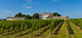 Montbazillac-viñedo del castillo de Bergerac-Dordoña-Francia Fotos de archivo libres de regalías
