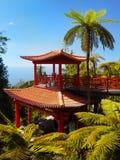 Monte宫殿热带庭院,丰沙尔,马德拉岛,葡萄牙 免版税图库摄影