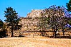 Monte Alban Ruins σε Oaxaca, Μεξικό με τα δέντρα Στοκ Φωτογραφίες