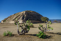 Monte Alban - the ruins of the Zapotec civilization in Oaxaca, M Stock Images