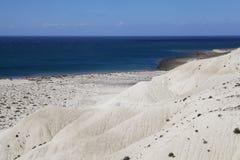 Monte após Punta LOMA perto de Puerto Madryn, uma cidade na província de Chubut, Patagonia, Argentina Imagem de Stock Royalty Free