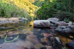 Monte Arcosu山公园在Sardegna 免版税库存图片