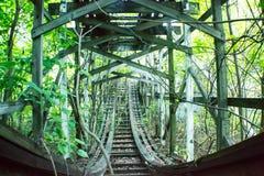 Monte através da natureza da selva que toma sobre o divertimento velho Fotos de Stock
