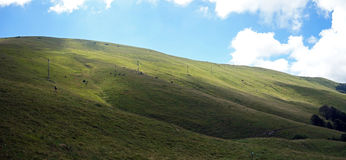 Monte Baldo, луг стоковое фото rf