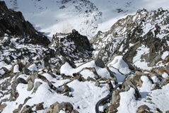 Monte bianco mont blanc. Ghiacciaio stock images