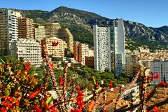 Monte Carlo, Monaco, ville, gratte-ciel, fleurs Photo stock