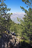 Monte Cinto peak seen from Cavallo Morto forest in Corsica Stock Photos