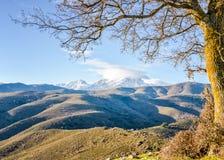 Monte Cinto van Col. de San Colombano in Corsica royalty-vrije stock fotografie