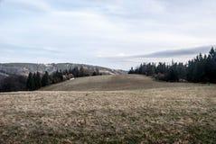 Monte coberto pelo prado da montanha com as árvores ao redor e o outro monte no fundo durante o outono Imagens de Stock