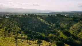 Monte com campo Palma e árvores foto de stock royalty free